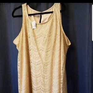 New with tags gold lace Maurices dress